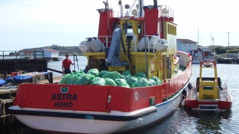 Tomburkar gav 130 000 kronor till sjöräddning