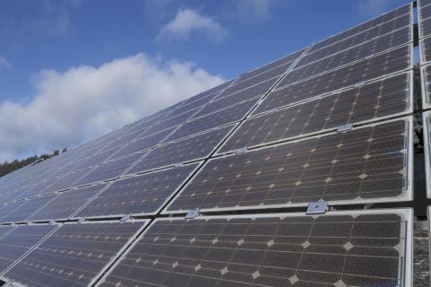 Energierekord am Muttertag: Rund 255.000 Photovoltaikanlagen im Netzgebiet des Bayernwerks liefen auf Hochtouren