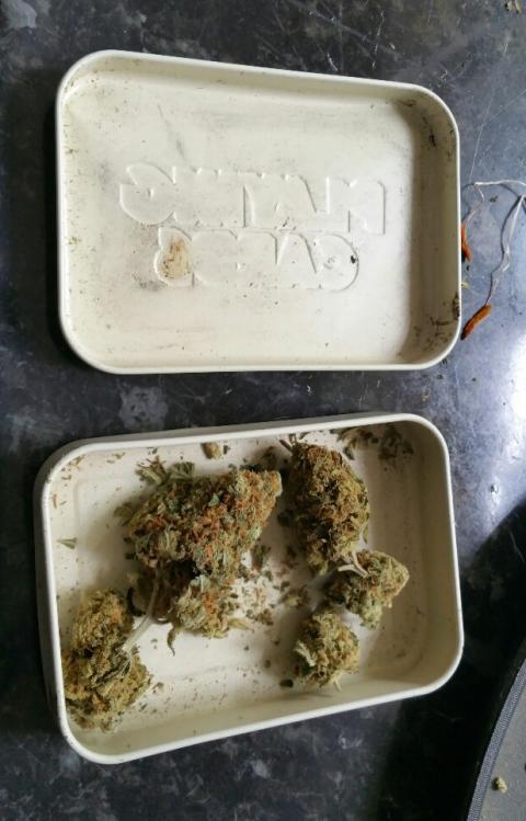 Drugs seized in Rodney Street, Birkenhead