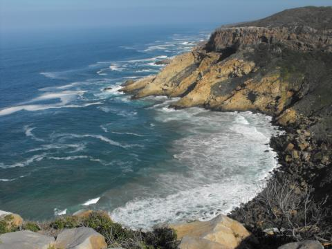 Walking on the Wild Coasts of South Africa