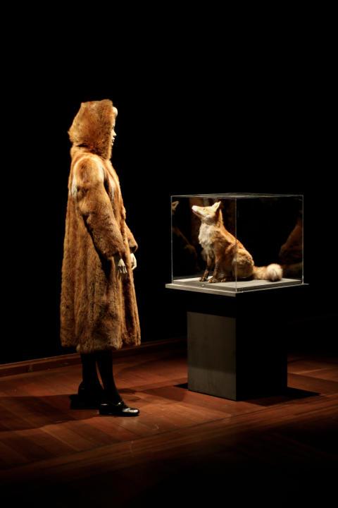 Mannequin i rævepels ved siden af ræv i montre