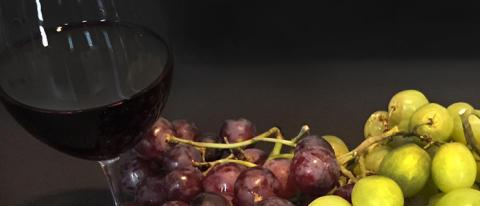Vinprovning och middag med tema Australien och Nya Zeeland