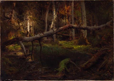 Eventyrrommet. August Cappelen, Skoginteriør, ant. 1851