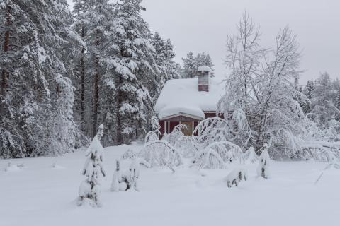Stora snömängder i länet - Länsstyrelsen avråder från jakt med lös hund