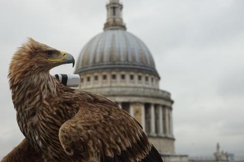Лондон с высоты птичьего полёта с Sony Action Cam Mini