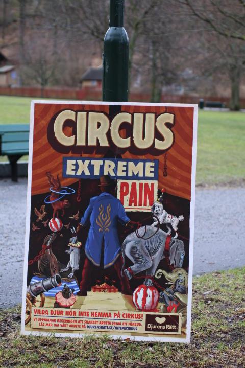 Cirkusaffisch 2016