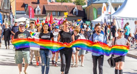 Nordiska museet och Blankspot på resa i den svenska demokratin