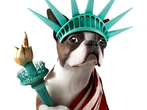 Frihedsgudinde Hund