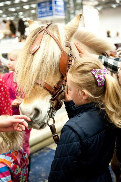 På EuroHorse kan man klappa och hälsa på hästerna vilket är en hit för alla barn.
