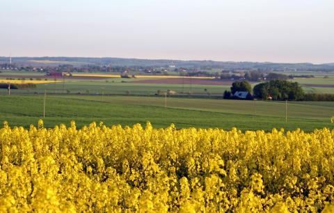 Prognoser över växtskyddsmedel viktigt för en konkurrenskraftig odling