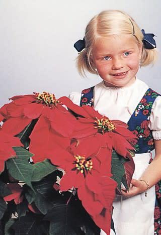 Annette Hegg, men julestjernen 'Annette Hegg'