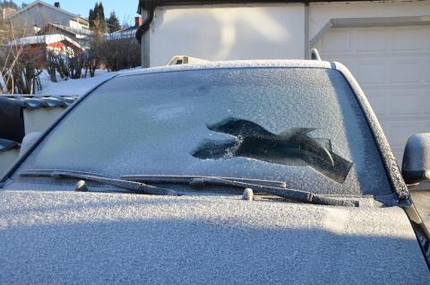 Vinteren er kommet: Dårlig sikt kan koste deg førerkortet