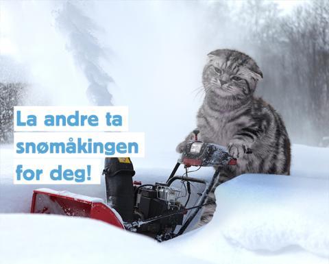 Finn og Fjordland gir mulighet til å la andre ta snømåkingen for deg