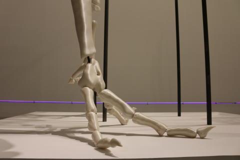 Hochtechnologie-Einsatz an der Schnittstelle zwischen Wissenschaft und Kunst