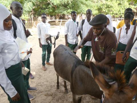 WTG-Gambia-Kurs