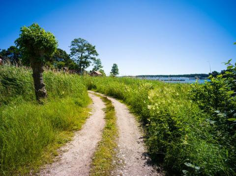Nya miljömål för ett långsiktigt hållbart samhälle