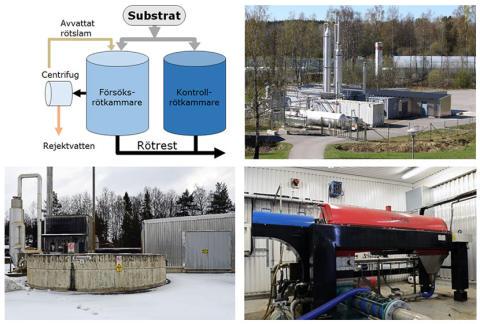Ny SVU-rapport: Rötning med integrerad slamförtjockning för ökad biogasproduktion (avlopp och miljö)