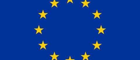 TALA KLARSPRÅK OM VILKET EU NI VILL HA!