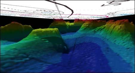 Satsning på svensk digital djupdatabas ger ny bild av miljön på havsbotten