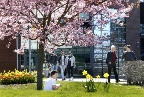 Störst intresse för juristprogrammet vid Karlstads universitet