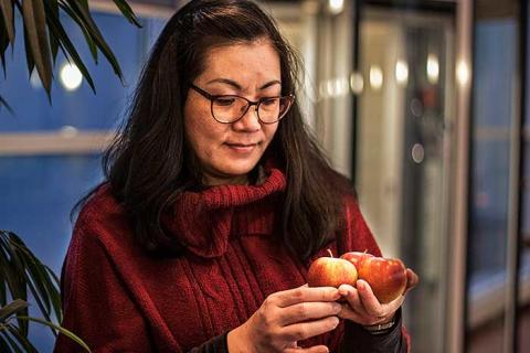 Tuyet vet hur vi får friskare äpplen