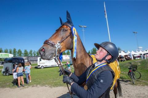 Ponnyer inleder SM-veckor i Södertälje