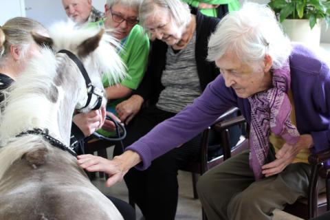 Holbæk Kommune forlænger kontrakt: Forenede Care skal fortsat drive Kastaniely Plejecenter