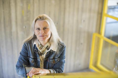 Maria Nilsson, Institutionen för mediestudier