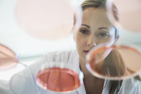Fas 2-studien för behandling av prurigo nodularis med nemolizumab presenteras i New England Journal of Medicine