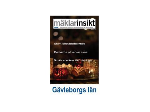 Mäklarinsikt Gävleborg 2013:4