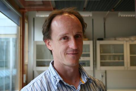 Mikael Oliveberg