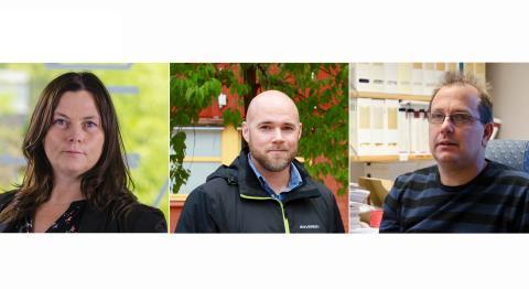 Ny rapport kartlägger möjligheterna för grön energiomställning i Norrbotten