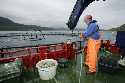 Akvaplan-niva søker seniorrådgiver og rådgiver havbruk til nytt kontor i Bodø
