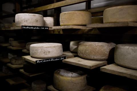 Käse aus Norwegen