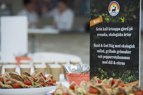 Plantbaserad och ekologisk lunch