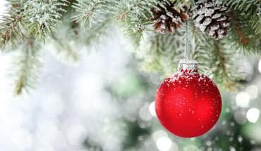 Hur källsorterar man julen?