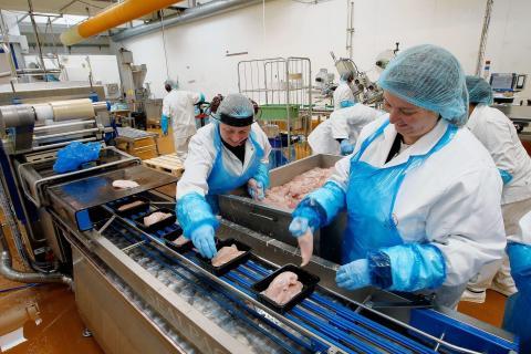 "Nordisk madgigant: ""Manuelt talfedteri slagtede effektiviteten"""