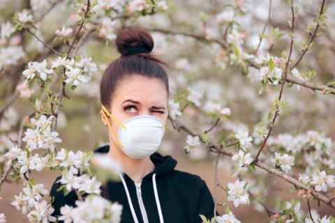 Frühling: Wenn die Pollen plagen…
