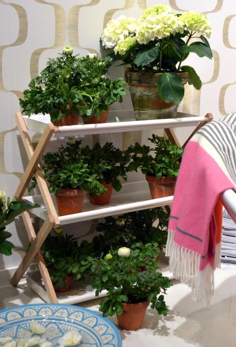 Inred med Krukväxter i stilen Penthouse Perfect