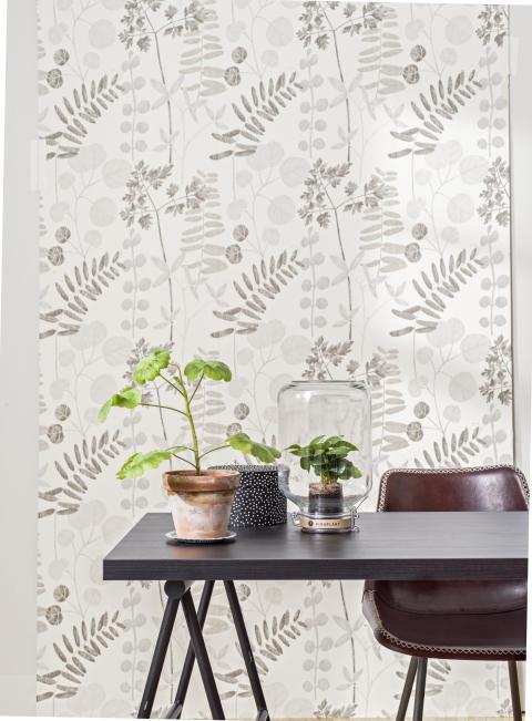 Borosan Papper17, 3534 Botany