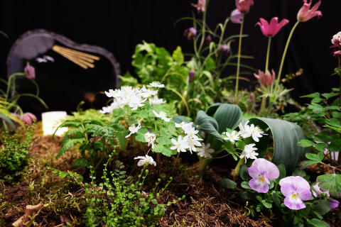 Ett av exemplen i utställningen Evighetens Trädgårdar som visade gravplanteringar under Nolia Trädgård.