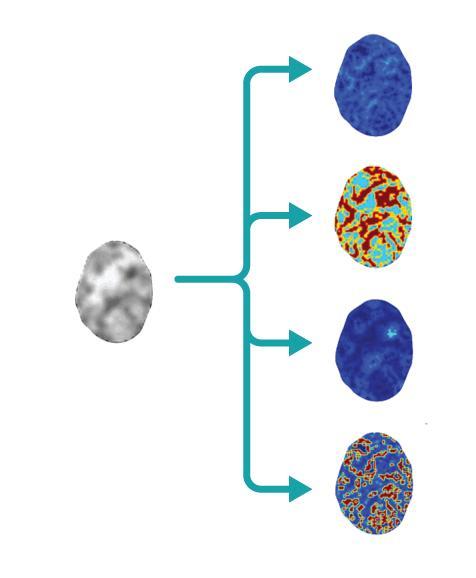 chromatin i celler