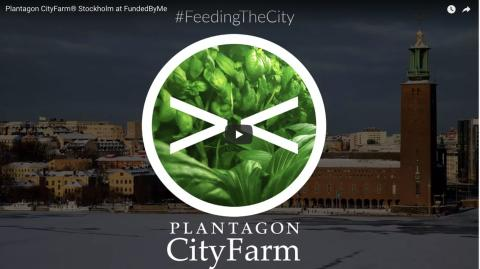 Feeding the city – local, sustainable and profitable food, grown in cities