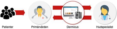 Artificiell intelligens kan öka kunskapen om pigmentförändringar och hudcancer