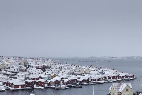 Känn energin - en bildserie om vinterns möten