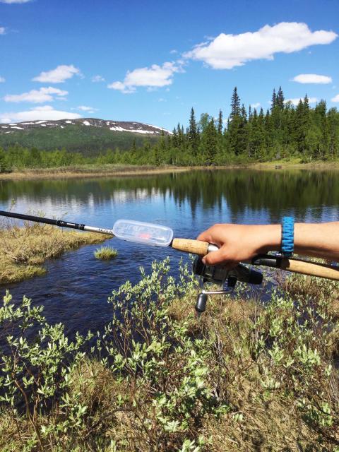 Lurep - Hållare till fiskedrag