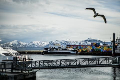 Арктические граффити в Тромсе