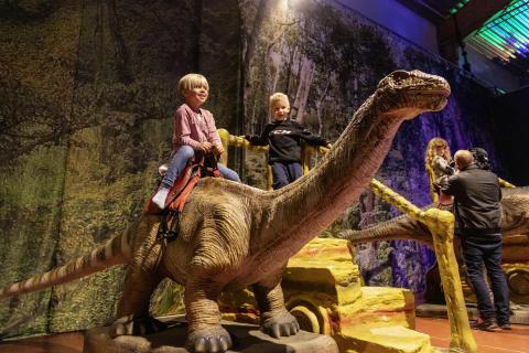 Besökssuccé för dinosaurieutställningen i Skellefteå!