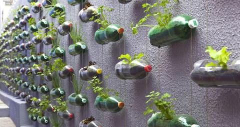 DIY: Så odlar du på litet utrymme