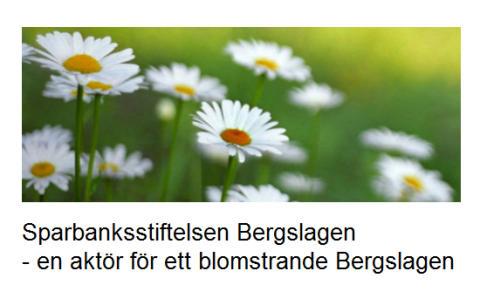 Dags igen att söka bidrag från Sparbanksstiftelsen Bergslagen